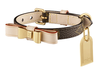 lv_baxter-xsmall-dog-collar